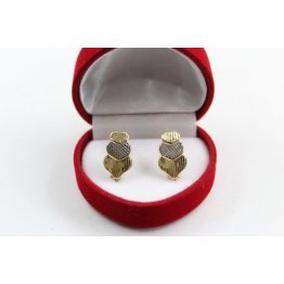 Златни дамски обеци бяло и жълто злато 3126